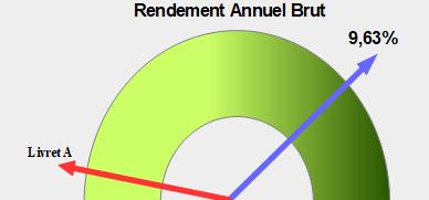 Graphique-Rendement-Annuel-Brut